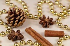 Cones do pinho, varas de canela, anis de estrela e ouropel da pérola Fotografia de Stock