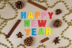 Cones do pinho, varas de canela, anis de estrela, ouropel da pérola e feliz Foto de Stock