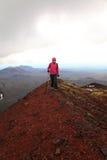 Cones do Scoria perto do vulcão de Tolbachinskiy. Fotografia de Stock