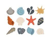 ?cones do vetor do escudo do mar no estilo dos desenhos animados Ajuste do molusco dos moluscos Cockleshell do oceano ilustração stock