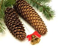 Cones e Bell do Natal Fotografia de Stock