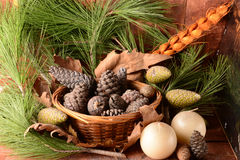 Cones e cestas Imagem de Stock