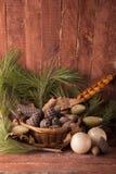 Cones e cestas Foto de Stock Royalty Free