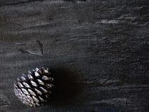 Cones em um fundo cinzento Fotos de Stock