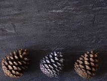 Cones em um fundo cinzento Fotos de Stock Royalty Free