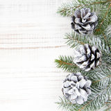 Cones and fir branches Royalty Free Stock Photography