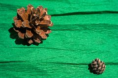 Cones on green paper Stock Photography