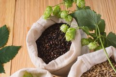 Cones of hops and pale caramel, chocolate malt in bags on woode. N background. top view, closeup. Ingredient in beer industry. Craft beer brewing from grain royalty free stock photography