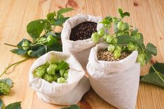 Cones of hops and pale caramel, chocolate malt in bags on woode. N background. top view, closeup. Ingredient in beer industry. Craft beer brewing from grain royalty free stock photos