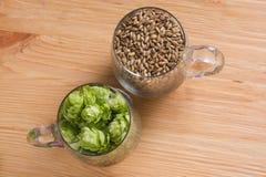 Cones of hops and pale caramel malt in glass mug, closeup. Ingre. Dient in craft beer brewing from grain barley malt. Ale or lager from pilsner malt Stock Image