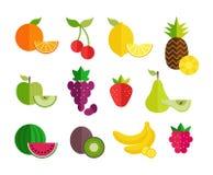 ?cones lisos do fruto ajustados Projeto liso colorido para bandeiras da Web, sites, materiais impressos, infographics Vetor saudá ilustração do vetor