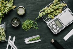 Cones of marijuana flowers on scales, grinder and shredded cannabis joint and a packet of weed on a black wood background royalty free stock photo