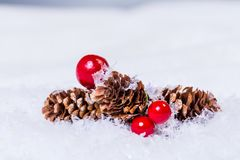 Merry christmas background. Cones and red berries on fake snow Stock Photo