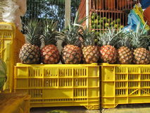 Pineapples in the street. Royalty Free Stock Photos