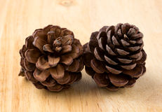 Cones various coniferous trees on wood background Royalty Free Stock Photography