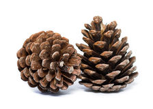 Cones on white. Cones isolated on white background Royalty Free Stock Image