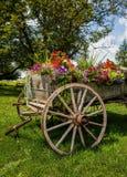 Conestoga funktionsduglig vagn Royaltyfria Bilder