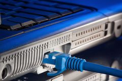 Conexão à rede informática prendida do conector rj45 Fotografia de Stock