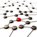 Conexão com a liderança Imagem de Stock Royalty Free