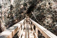 Conexión de madera, Marin County Foto de archivo libre de regalías
