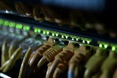 Conexiones de los cables de Internet con los servidores Centros de la fecha del servidor foto de archivo