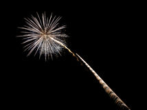 Coney Island Beach Fireworks Royalty Free Stock Image