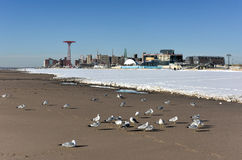Coney Island Beach with Snow Stock Photo