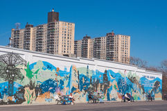 Coney Island graffiti Royalty Free Stock Photos