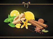 Confectionary spices Royalty Free Stock Photography