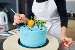 The confectioner decorates the cake on the table in the kitchen. The confectioner decorates the cake on the table in the kitchen in the pastry shop Royalty Free Stock Image