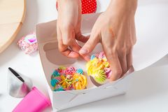 Confectioner woman packing. Close-up of a confectioner woman wrapping in a white cardboard box a capcake with berries, decorated with cream and flowers on a Royalty Free Stock Photos