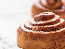 Confectionery baking. Sweet fresh soft roll bun with cinnamon on white background. Cinnabon closeup.  royalty free stock images