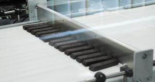 Confectionery factory. Chocolate production. Trays with chocolate bars move along the conveyor. 4K stock video footage