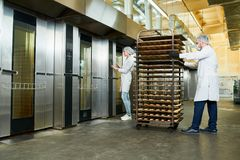 Confectionery factory workers transporting trays rack. Confectionery factory employees in white coats waiting for elevator to transport trays rack with pastry stock photos