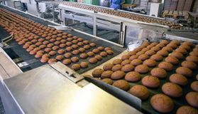 Confectionery food factory. Production line or conveyor belt, baking cookies process manufactory. Close up stock photo