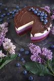 Mousse cake with chocolate, yogurt and blueberries on a dark background with lilac, Confectionery, Pastry. Confectionery, Mousse cake with blueberries on a dark royalty free stock images