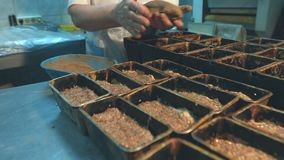 Bread making. Confectionery worker makes bread with sunflower seeds and sesame. Bread production process stock video