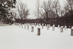 Confederate Graves Cedar Grove Royalty Free Stock Image