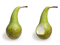 Conference pear Royalty Free Stock Photos