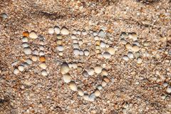 Confession of love made of shells , beach with shells. A Royalty Free Stock Photos