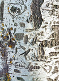 Confessions carved birch crust Royalty Free Stock Images