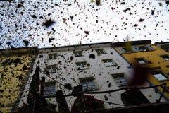 Confetes de Konstanz Fasnacht imagem de stock royalty free