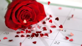Confetti falling on red rose and calander showing Valentines day. In slow motion stock footage