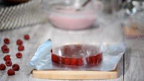 Confettiere della donna che fa il dolce del lampone in forno stock footage