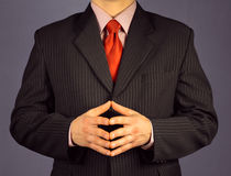 Confidence businessman Royalty Free Stock Image
