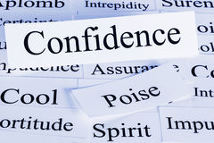 Confidence Concept. A conceptual look at confidence, poise, assurance, cool royalty free stock photos