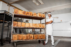 Confident Baker Standing Arms Crossed By Fresh Bread Rack royalty free stock photo