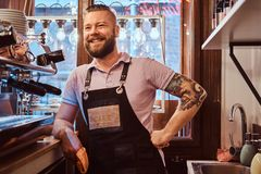 Barista with stylish beard and hairstyle wearing apron smiling and looking sideways while leaning on a counter in the. Confident barista with stylish beard and stock photo