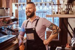 Barista with stylish beard and hairstyle wearing apron smiling and looking sideways while leaning on a counter in the. Confident barista with stylish beard and royalty free stock photos