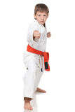 Confident boy in kimono in fighting stance Royalty Free Stock Image
